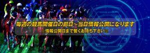 中央競馬投資会WINNERS(中央競馬投資会ウイナーズ)-無料コンテンツ-無料情報