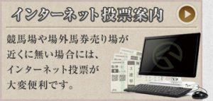 平馬の鉄人-初心者ガイド-インターネット投票案内