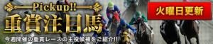 FullGate-無料コンテンツ-重賞注目馬