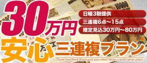 競馬投資の高配当-有料情報-30万円安心三連複プラン