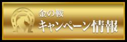 金の鞍_有料情報_キャンペーン情報