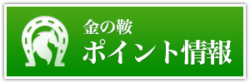 金の鞍_有料情報_ポイント情報