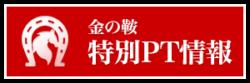 金の鞍_有料情報_特別ポイント情報